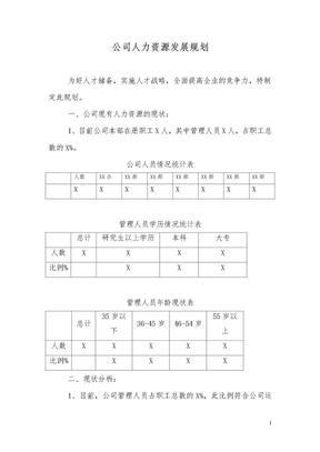 XX公司人力资源发展规划.doc