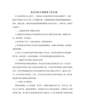 重点中医专科建设工作计划.doc