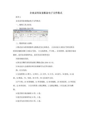 企业录用备案报盘电子文件格式.doc