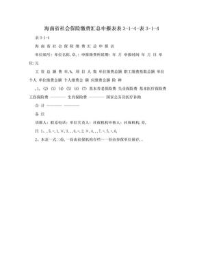 海南省社会保险缴费汇总申报表表3-1-4-表3-1-4.doc