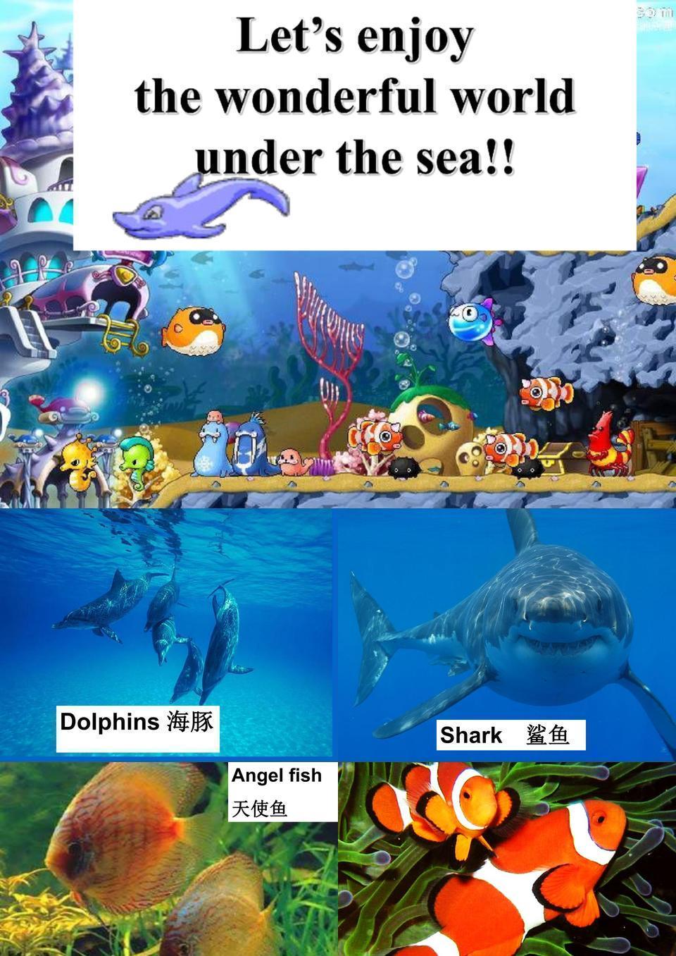 新人教版选修七 Unit 3 Under the Sea-Reading.ppt