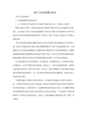 项目工作总结报告范文.doc