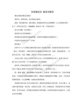 问道桃花谷 桃花谷踏青.doc
