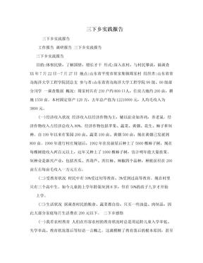 三下乡实践报告.doc