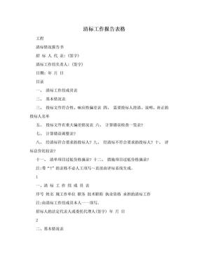 清标工作报告表格.doc