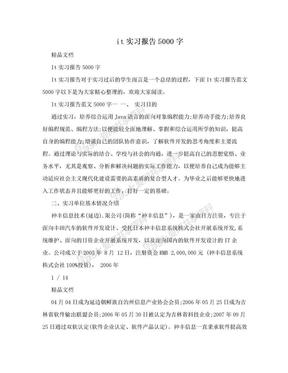 it实习报告5000字.doc