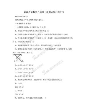 湘湘教版数学八年级上册期末复习题(二).doc