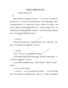 高校骨干教师培养计划.doc