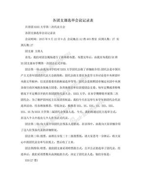 各团支部选举会议记录表.doc
