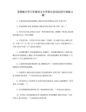 苏教版小学六年级语文小升初古诗词运用专项练习题.doc