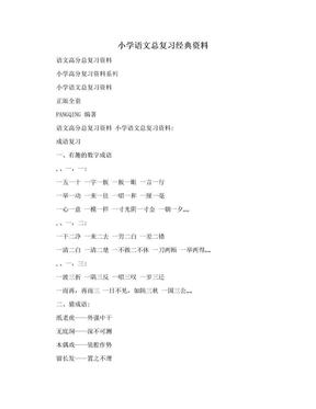 小学语文总复习经典资料.doc
