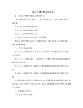 公司利润分配方案范文.doc