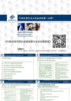 中国促进可再生能源政策与未来发展展望.ppt