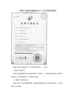 锂离子电池负极材料生产工艺开发技术报告.doc