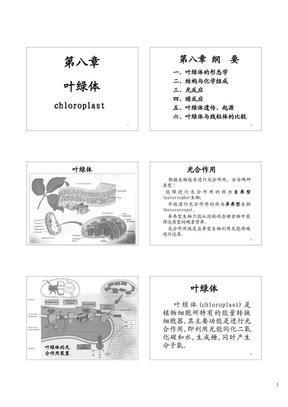 中山大学细胞生物学课件(王金发)第8章_(PPTminimizer).pdf