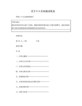 (案例)流动资金调查报告.doc