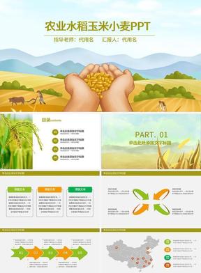 农业水稻玉米小麦PPT.pptx
