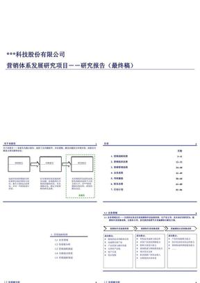 科技股份公司营销体系发展研究报告.ppt