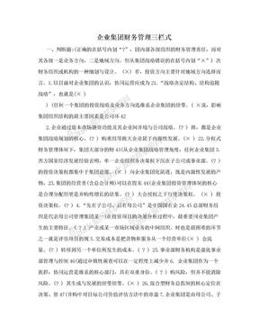 企业集团财务管理三栏式.doc