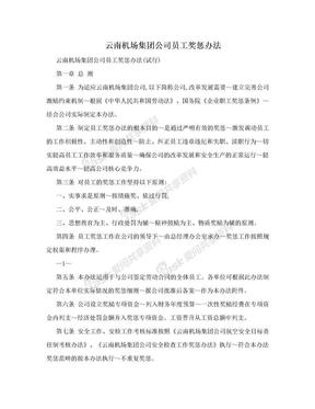 云南機場集團公司員工獎懲辦法.doc