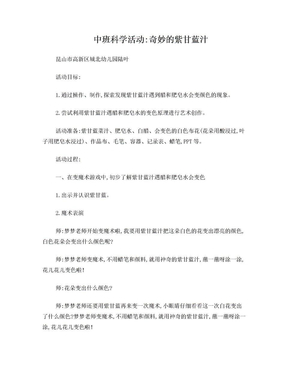 中班科学教案 神奇的紫甘蓝汁.doc