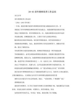 20-03青年教师培养工作总结.doc