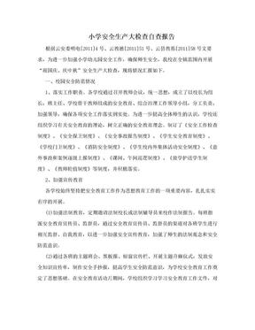 小学安全生产大检查自查报告.doc