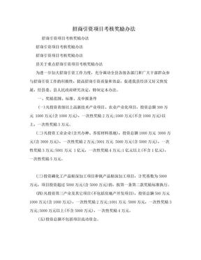 招商引资项目考核奖励办法.doc