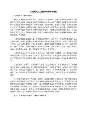 公司新员工入职培训心得体会范文.docx