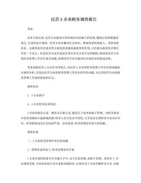 民营A企业财务调查报告.doc
