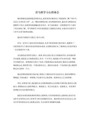 青马班培训心得体会.doc