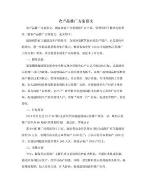 农产品推广方案范文.doc