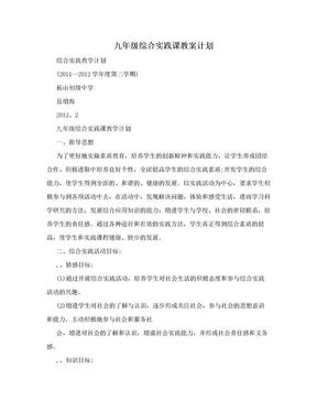 九年级综合实践课教案计划.doc