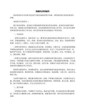 党组织公开承诺书.docx