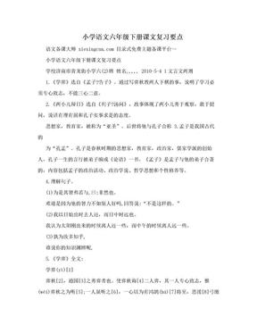 小学语文六年级下册课文复习要点.doc