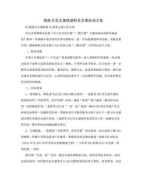 镇机关党支部联建村党支部活动方案.doc