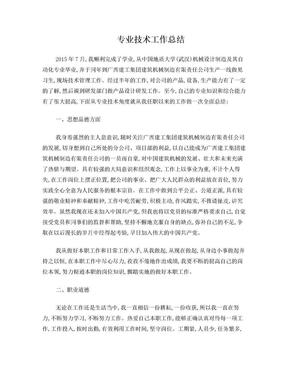 职称专业技术工作总结.doc