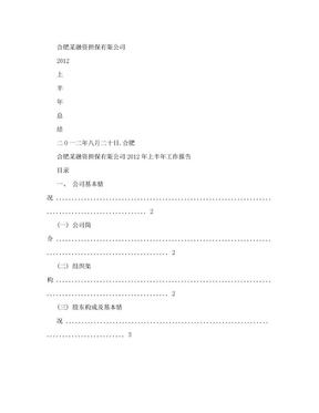 担保公司年度工作总结.doc