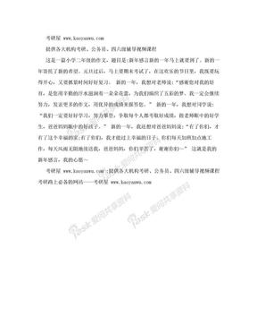 小学二年级作文:新年感言.doc