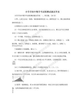 小学升初中数学考试检测试题及答案.doc