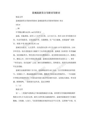 盐城旅游景点导游词导游词.doc