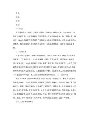 人力资源实训总结报告.doc