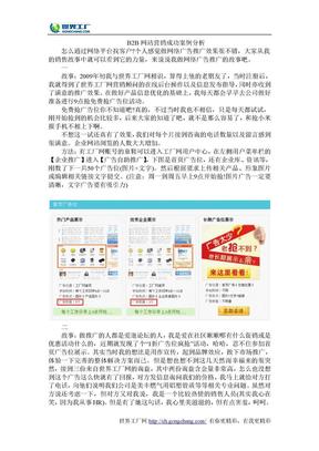B2B网站营销成功案例分析.doc