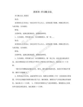 苏国圣-开天眼方法_.doc