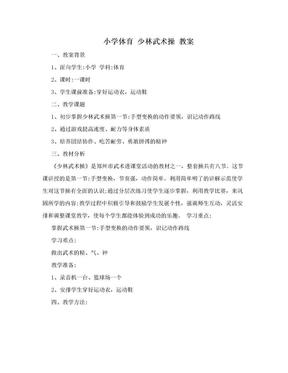 小学体育  少林武术操 教案.doc