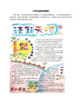 小学生法制手抄报图片.docx