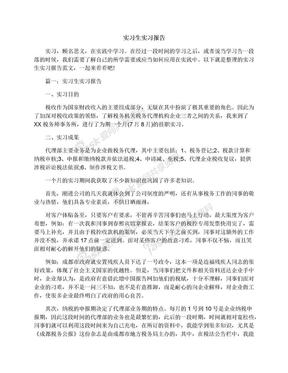 实习生实习报告.docx