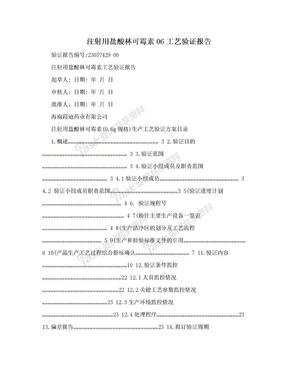 注射用盐酸林可霉素06工艺验证报告.doc