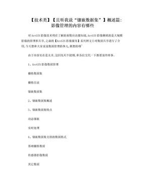 """""""镶嵌数据集"""" 详细解说.doc"""