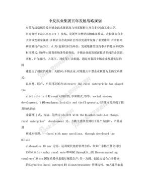 中发实业集团五年发展战略规划.doc